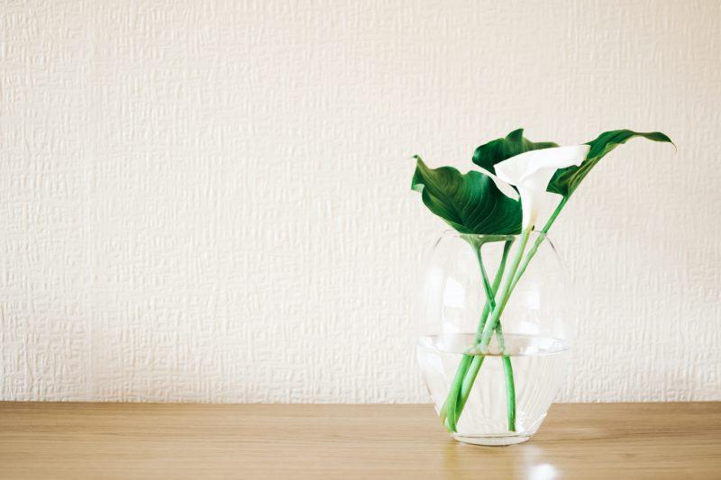 W jaki sposób dokonać wyboru szklanych wazonów?